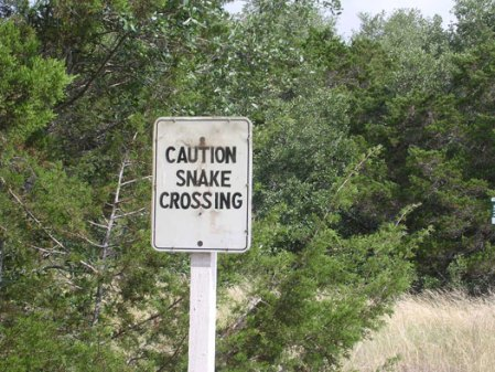 It's a good thing I pedal fast, so I can outrun the snakes. Actually, they never cross at the marked crossing. They're jaywalkers. Or jayslitherers.